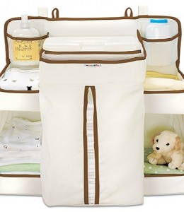 Munchkin-Organizer-for-infant-0